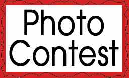 Ben Franklin Crafts & Frame Shop are holding a Photo Contest to win a $100 GIFT CARD!